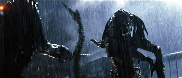 In this image, the Predalien faces off against the Predator.